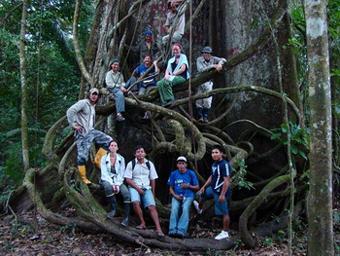 Al Corazón del Amazonas